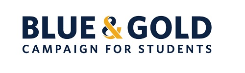 blue & gold banner