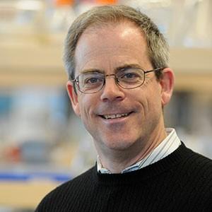 Dr. David Kitts